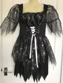 'Fun Shack' Women's Halloween Costume – Wicked Spell Caster – Dress with Hat