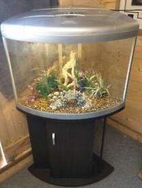 Aqua One UFO 550 - 100L Fish Tank