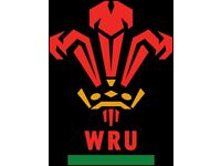 Wales vs South Africa Rugby Tickets x2