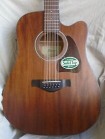 Ibanez 12 String Electro Acoustic Guitar
