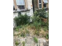 Able gardening and trees and rubbish removal