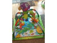 Fisherprice Rainforest Play Gym