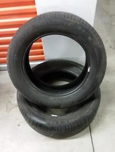 (Y18) 2 Pneus Ete - 2 Summer Tires 225-60-17 Michelin