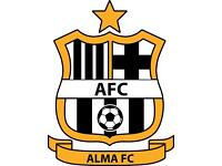 Sunday 11-a-side Football Club (ALMA FC) - players needed for 17-18 season!