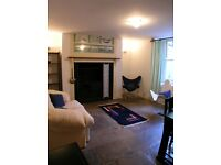 LARGE CENTRAL 1 BEDROOM PERIOD GARDEN FLAT ON THE HOE