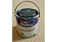 Dulux Natural Hints Jade White Pale Green Matt Paint For Walls & Ceilings Almost 1/2 of a 2.5L Tin