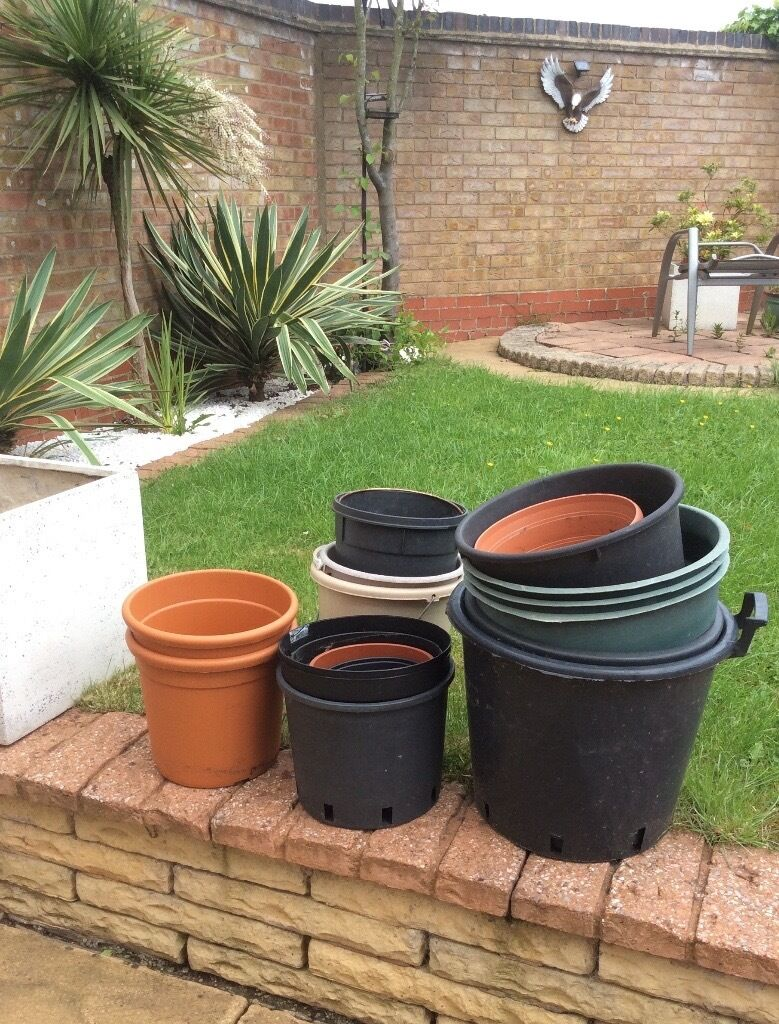 bargain assorted plastic pots in coventry west midlands gumtree