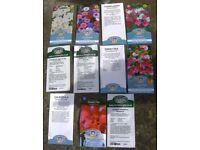 Flower Seeds approx £24 worth