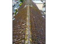 Roof cleaning / repaired