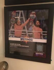 WWE THE HARDY BOYZ WRESTLEMANIA 33 FRAMED PLAQUE NUMBER 76 OF 250