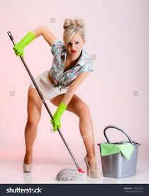 high standard cleaning service in Chester domestic and commercial