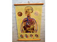 ST. John Ambulance medical anatomical chart poster wall art vintage retro antique industrial macabre