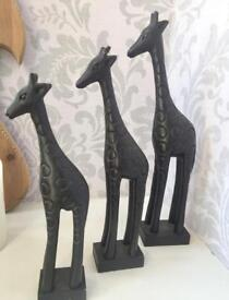 Set of three carved graduated wooden giraffes in dark wood.