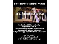 Blues Harmonica Player Wanted