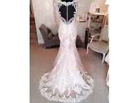 bnwot Enzoani Beautiful collection lace and illusion back wedding dress. size 14/12 cost £1200