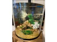 Tetra 60 litres fish tank full set