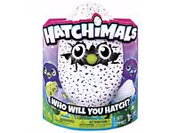 HATCHIMALS DRAGGLES PURPLE/BLUE - LAST ONE AVAILABLE - COLLECT NOW ST. AUSTELL, CORNWALL