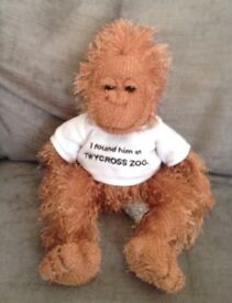 Cuddly Toy Monkey