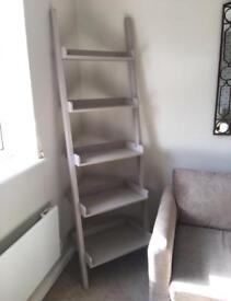 Marks & Spencer Ladder