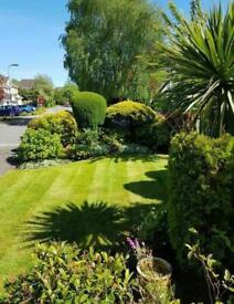 Garden, Gardening, Landscaping, Landscape Gardener, Garden Clearance, Waste Removal