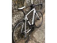 Claud Butler Torino, mens road bike, frame size 21 inch ; 54cm white/black