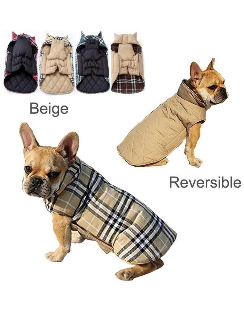 Burberry dog coat  f40de813f2d8