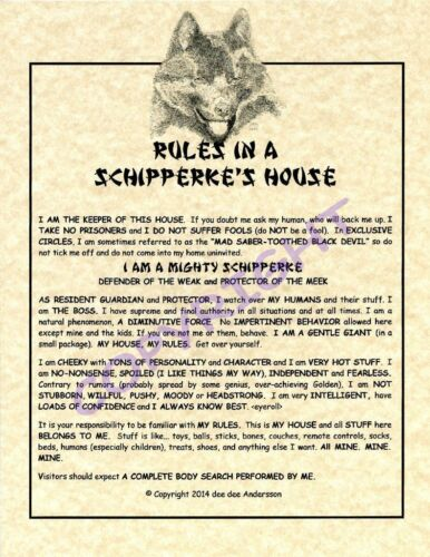 Rules In A Schipperke