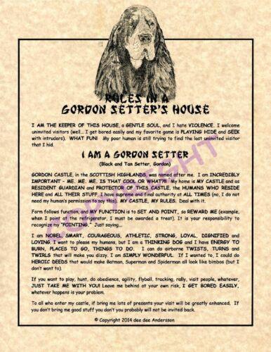 Rules In A Gordon Setter