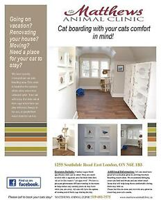 Cat Boarding with Your cats comfort in mind! London Ontario image 1