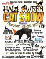 Volunteers still needed for the Cat Show
