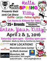 show & agility CATS wanted for Moncton Cat Show