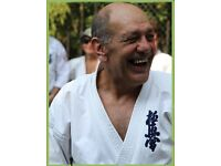 KYOKUSHINKAI KARATE WIMBLEDON / RAYNES PARK: Children's Karate Classes, Adults Kyokushin Karate