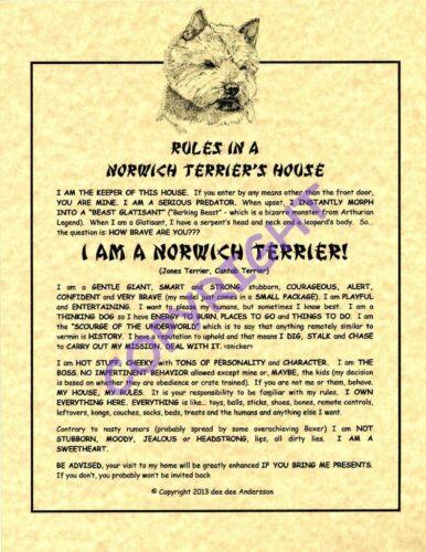 Rules In A Norwich Terrier