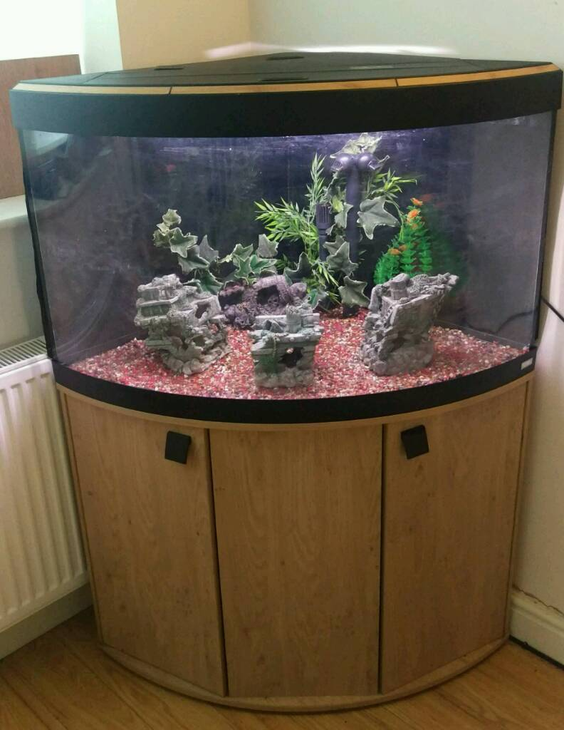 Fluval vinezia 190l tropical fish tank setup w external for Fluval fish tank