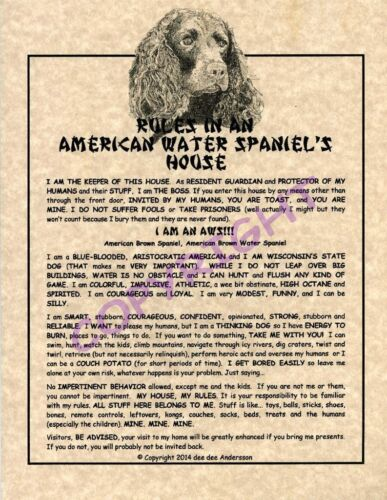 Rules In An American Water Spaniel
