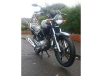 YAMAHA YBR 125 60 PLATE NEW SHAPE EXCELLENT CONDITION CAN DELIVER Similar CBF YZF CBR Lexmoto