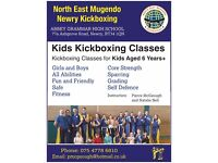 Kickboxing Classes in Newry