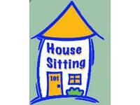 House Sitter, Dog Sitter & Babysitter
