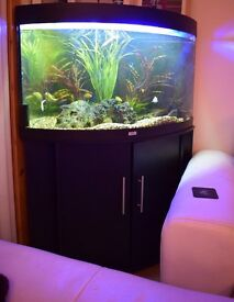 jewel 190 ltr corner tank