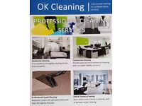 Fully Insured Cleaning Service!!