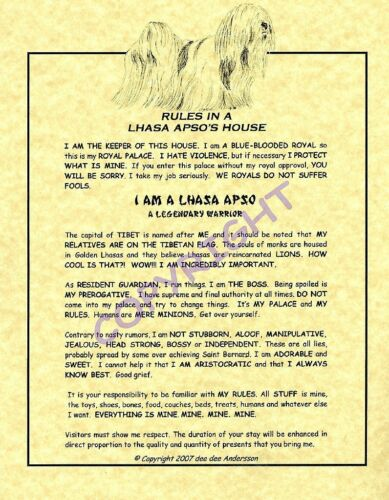 Rules In A Lhasa Apso