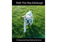 Dog Walking - Dog Walker