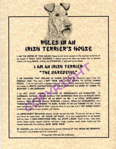 Rules In An Irish Terrier