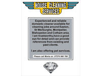 Experienced Cleaner with Good References Available !