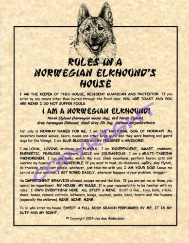 Rules In A Norwegian Elkhound