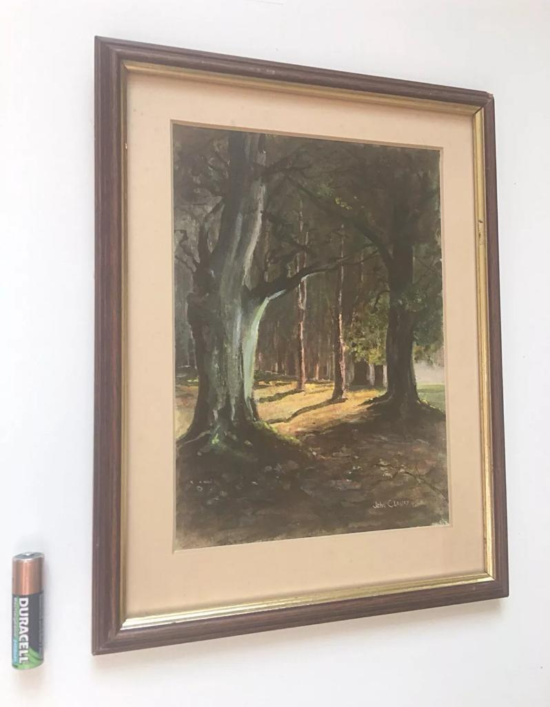 Small Watercolour Painting Woodland Landscape Framed Signed John ...