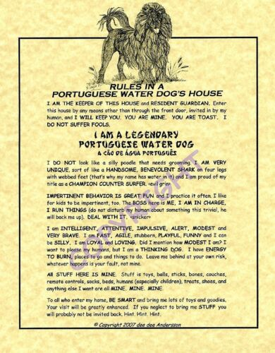 Rules In A Portuguese Water Dog