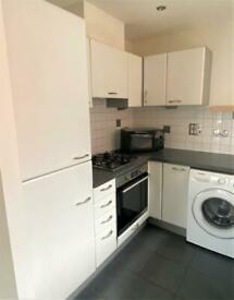 1 bedroom flat in Erebus Drive, London