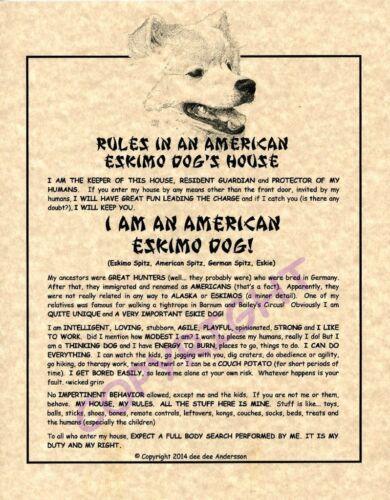 Rules In An American Eskimo Dog