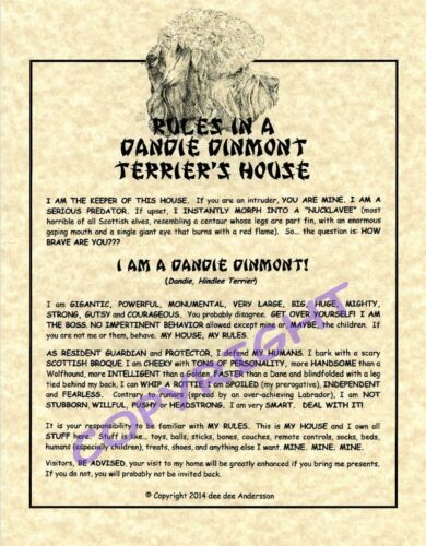 Rules In A Dandie Dinmont Terrier